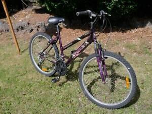 Gemini Sport mountain bike, 18 speed, 26 inch wheels