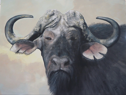 African art. Stunning buffalo print available.