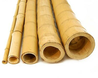 Bamboo Poles 3 X 8' Natural Tonkin Bamboo Extremely Strong Tiki Bar