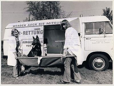 TIERSCHUTZVEREIN HAMBURG Rettungswagen / Schäferhund * Presse Foto 1974