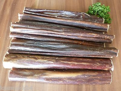 1 kg rinderschlund 12 cm snack per cani BARRA masticare CARNE SECCA speiseröhre