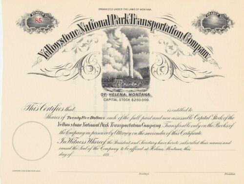 YELLOWSTONE NATIONAL PARK TRANSPORTATION COMPANY STOCK CERTIFICATE OLD FAITHFUL
