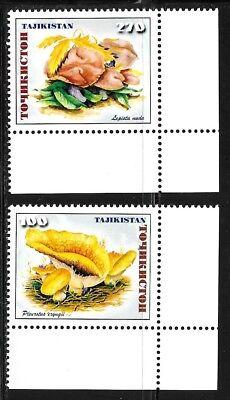 TAJIKISTAN SC 151-2 NH issue of 1999 Mushrooms