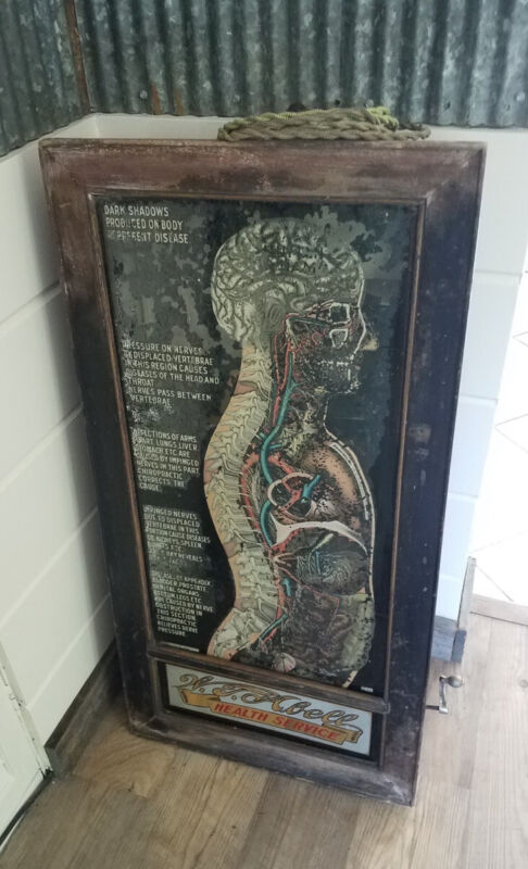 1920s W.T. Abell Motion Lighted Anatomy Skeleton Chart Sign Cranking Oddity
