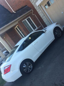 2008 Honda Accord Coupe  AS-IS