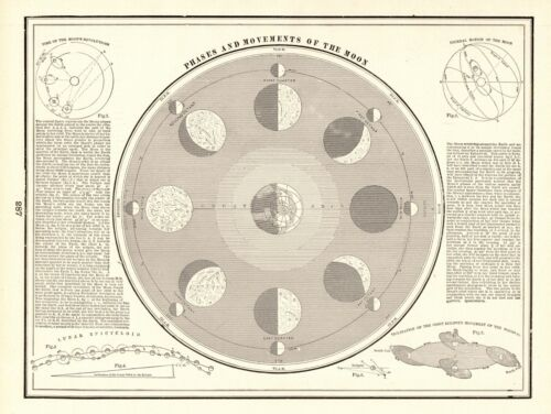 1895 Antique ASTRONOMY Print Vintage Moon Phases New Moon Full Moon Print 7957
