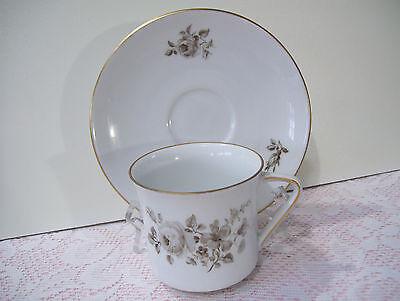 Twilight Rose Cup (Johann Haviland Bavaria Germany Twilight Rose Tea Coffee Cup & Saucer Set)