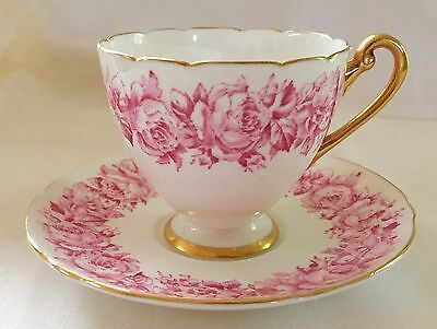 RARE & ELEGANT SHELLEY PINK ROSES CUP & SAUCER, RIPON SHAPE, 13986/53, FAB COND