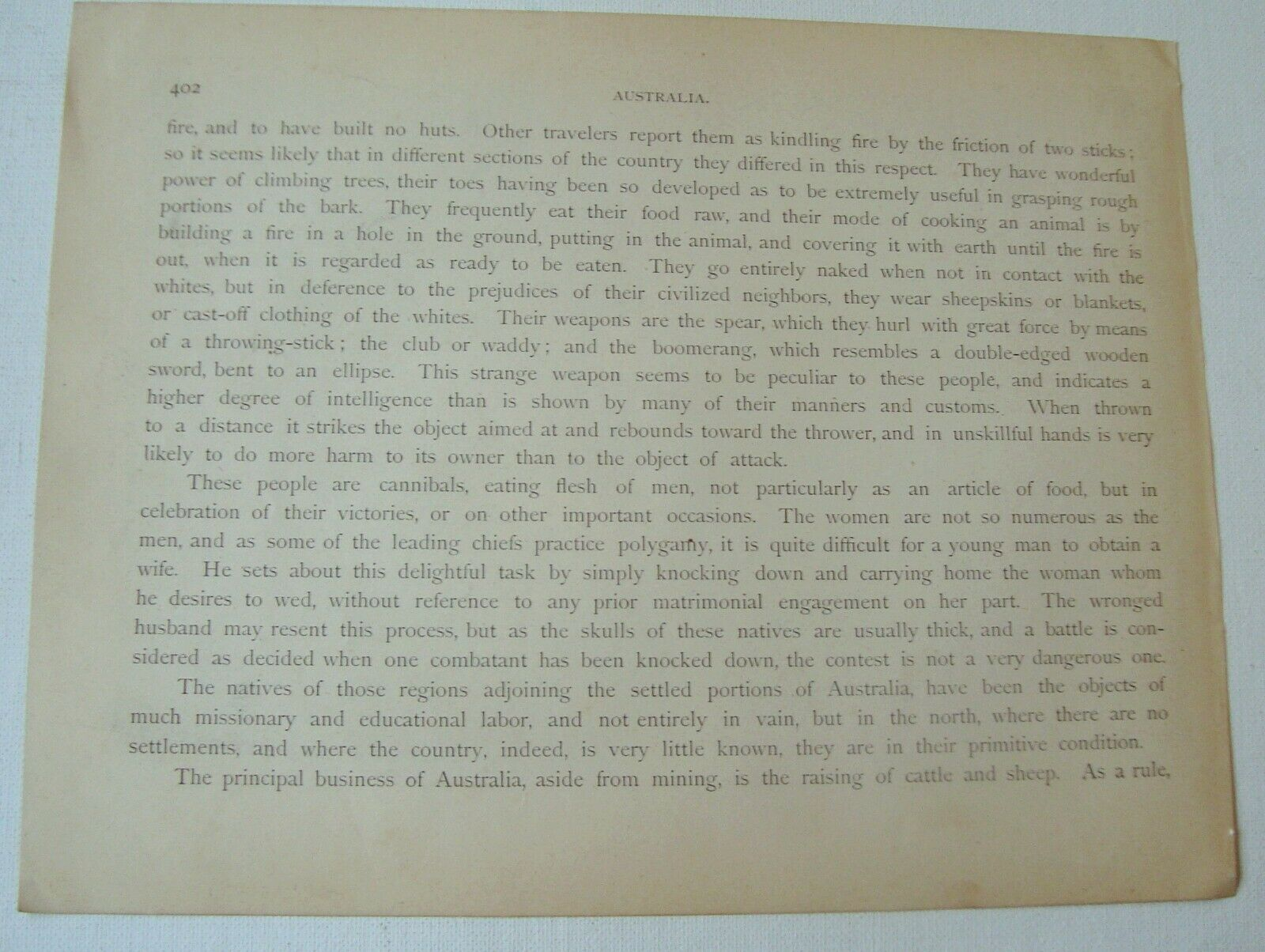 1894 Wood Engraving Bottle Tree Australia Text On Reverse, Noted Engraver - $16.00