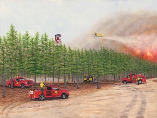 FOREST FIRE SERVICE - Limited Edition Signed Numbered Print  Artist J. Getsinger