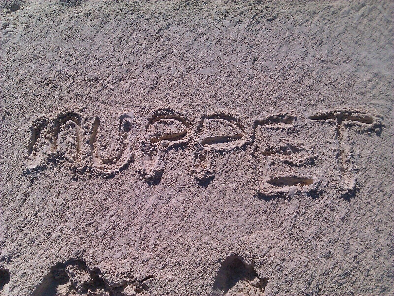 Muppets Store