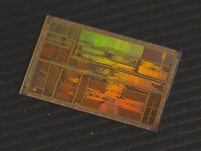 Vintage AMD K5 CPU die: Wafer was diced but dies were never packaged.