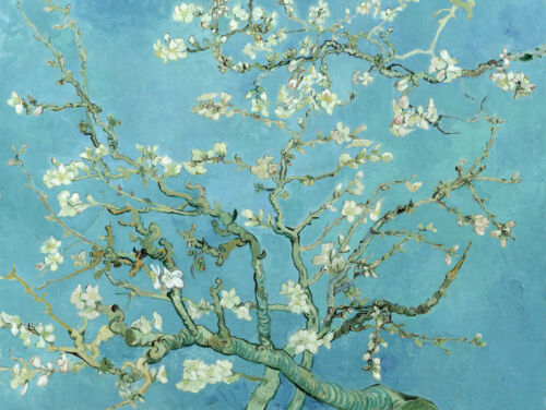 Branches with Almond Blossoms by Van Gogh, Giclee Canvas Print, in various sizes