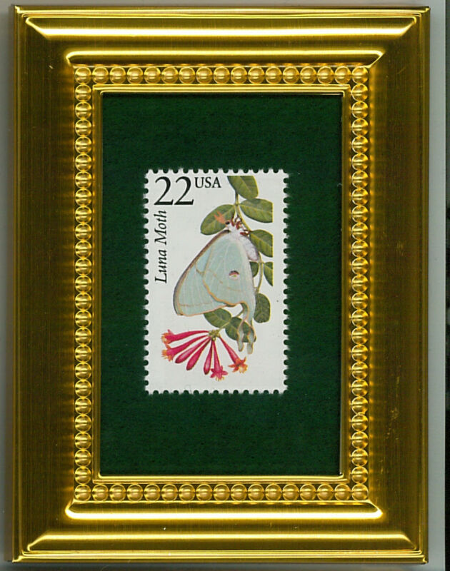 LUNA MOTH - A COLLECTIBLE GLASS FRAMED POSTAGE MASTERPIECE!
