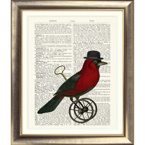 ART-PRINT-ON-ORIGINAL-ANTIQUE-BOOK-PAGE-Bird-Vintage-Picture-Contemporary-Poster