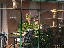 *** DOES YOUR CAT WANT TO BE IN THE SUN IN WINTER *** Preston Darebin Area Preview