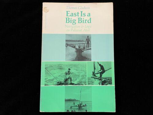 EAST IS A BIG BIRD NAVIGATION & LOGIC ON PULUWAT ATOLL MICRONESIA TRUK CANOE