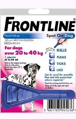 Frontline Spot On Flea Large Dogs 20kg-40kg 1 pipette AVM-GSL (Exp:01/2021)
