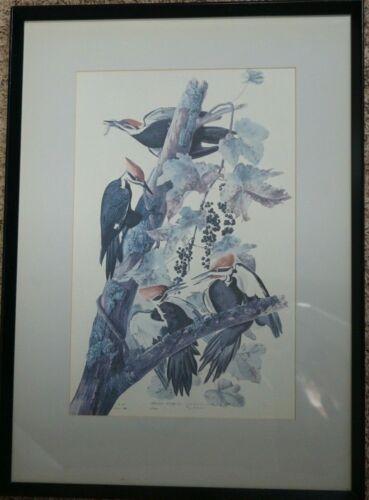 "1966 Color Audubon Print, Pileated Woodpecker, Framed, NY Historical, 16"" x 26"""