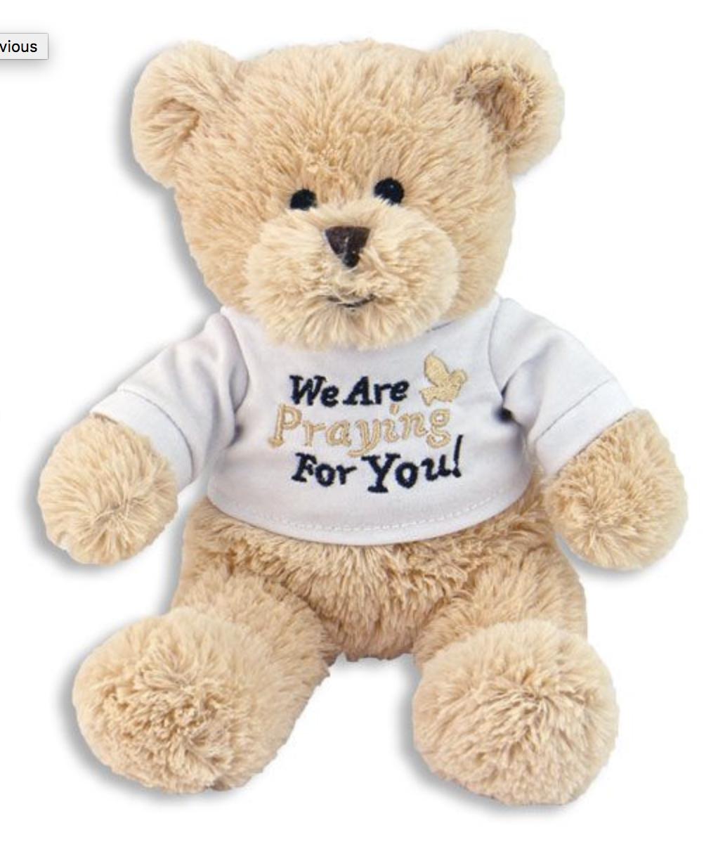 Plush Teddy Bear Cuddly Comforting Cheer Up Child Adult Pray