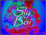 Sly Boi Music Plus Store