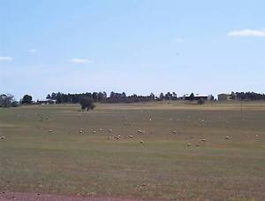 Farm with Subdivision Opportunity - Forbes NSW Forbes Forbes Area Preview