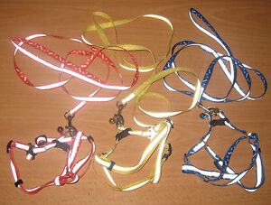 NEW-Reflective-Adjustable-Nylon-Harness-Bell-Lead-Set-Cat-Small-Pets-Dogs