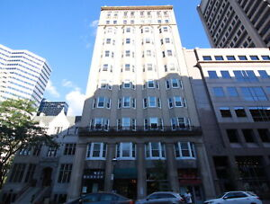 Steps from McGill - Furnished 4 1/2 - 2 Bed - 2 Bath - Renovated