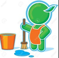Clean and Green Janitorial Services