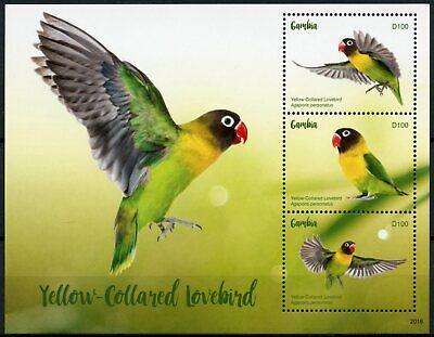 Gambia Birds on Stamps 2020 MNH Yellow-Collared Lovebird Lovebirds Parrots 3v MS