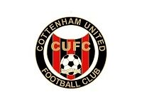 adults from 16yrs to 50yrs 11 a side players wanted for Cottenham United in all positions