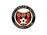 Wanted football manager for Cottenham United reserves 11 a side.