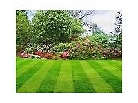 Screened topsoil and quality turf available in Nottinghamshire. Collection or delivery.