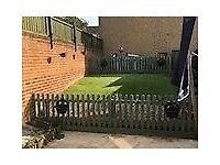 3bed house Clifton want 2/3 bungalow Clifton only