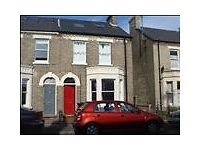 Spacious 1 bed flat with garden CB1 10 minutes cycle to Addenbrookes station & city centre