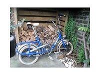 Graziella folding bike