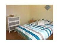 Amazing double room with separate bathroom in Herne hill with friendly flatmate.
