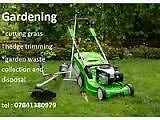 Stihl Garden service & tree removal waste