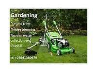 Stihl S.T Garden service & tree care