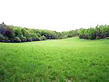 Looking for land in Corbeil area close to North Bay
