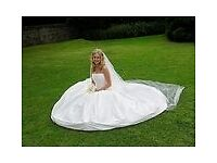 Dizzie Lizzie Couture Bridal Gown: Malibu (Wedding Dress)