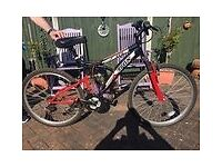 Men's bike great condition