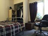 5 Bedroom Student House in Beautiful Neighbourhood for May! Kitchener / Waterloo Kitchener Area image 8
