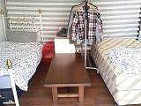 City: Looking for a housemate(Living share) Available NOW West Melbourne Melbourne City Preview