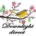 Downlightdirect