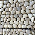 TILES - Cream Pebble 100 x 300 Sheet FOR SALE Southport Gold Coast City Preview