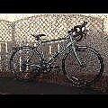 Road Bike - Carrera Vanquish