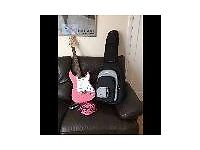 Tanglewwod electric guitar pink