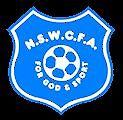 Coaching for Junior Soccer Players- Junior Parramatta Saints FC North Parramatta Parramatta Area Preview