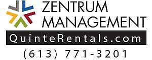 Zentrum Management